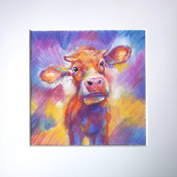 Cow product photo